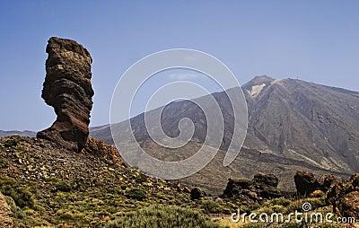 Rock tree and view on Teide, Tenerife, Spain.