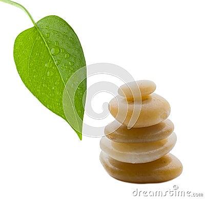 Rocks in balance with leaf