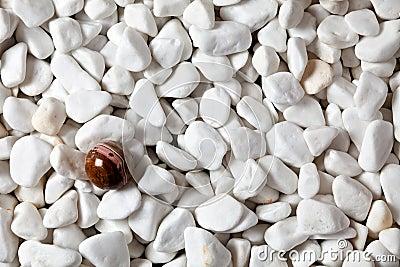 Rocks and ball