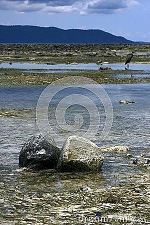 Free Rocks In Nosy Iranja Stock Photos - 27685003