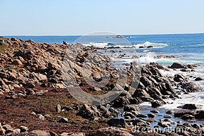 Rocks at Injidup Western Australia