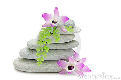 Rocks and Orchids