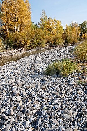 Rocks in river bed