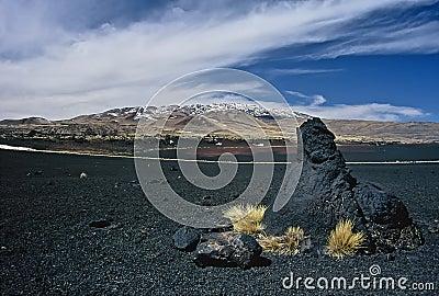 Rocks in Volcanic Landscape in Argentina,Argentina