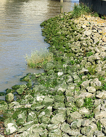 Rocks By Water 1