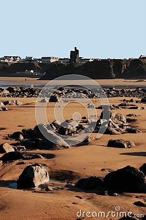 Free Rocky Beach 2 Royalty Free Stock Photo - 5093435