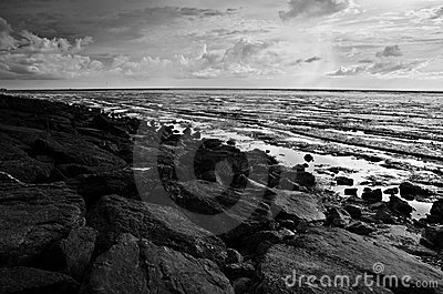 Rocky Beach During Low Tide