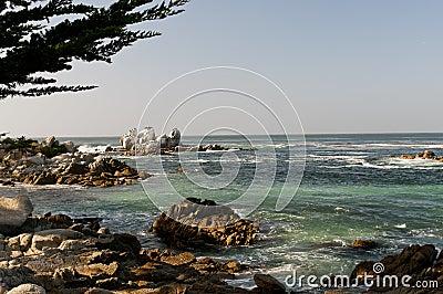 Rocky coastline Monterey