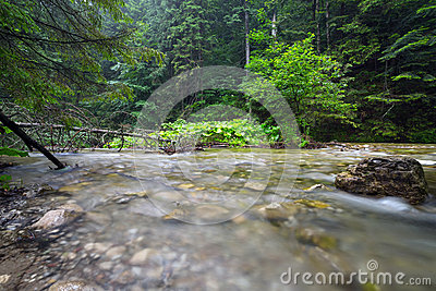 Rocky creek in Tatra mountains