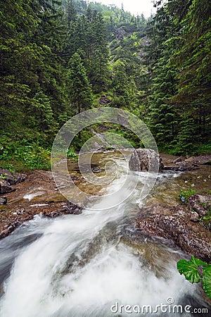 Rocky creek in Tatra mountains