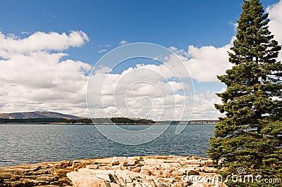 Rocky Maine coastline