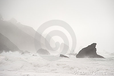 Rocky Mendocine Shore in Fog