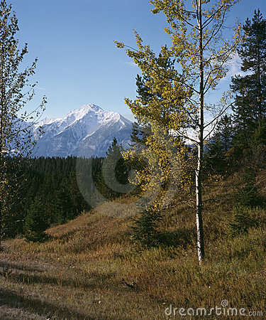 Rocky Mountain Autumn British Columbia Canada