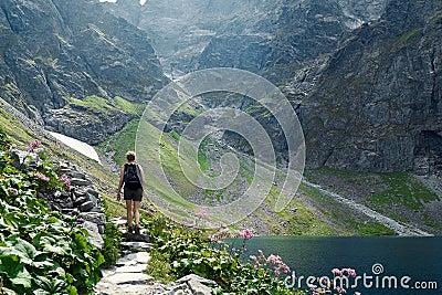 Rocky Mountain Hiker