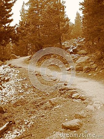 Rocky Mountain Path III
