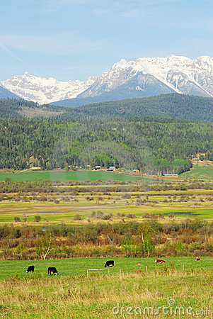 Rocky mountains and farms