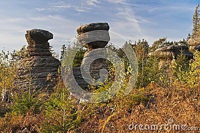 Rocky Mushrooms