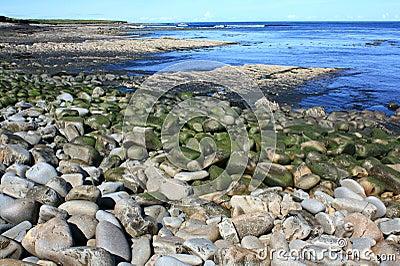 Rocky Shoreline, Ireland