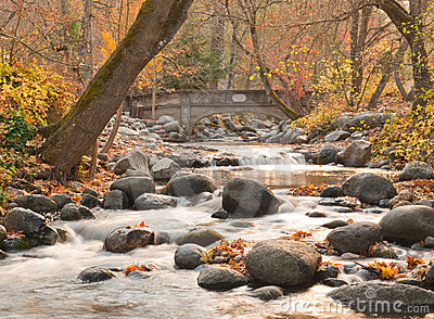 Rocky stream with bridge in autumn