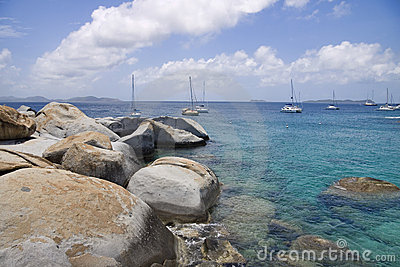 Rocky tropical shoreline