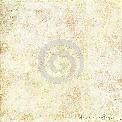 Rocznika podławej szyka zieleni różana tła tekstura