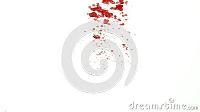 Rode oliedalingen in water het gieten onderaan dan toenemende file tot de hoogste langzame motie stock video