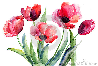 Rode tulpenbloemen