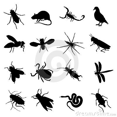 Rodent and pest silhouette