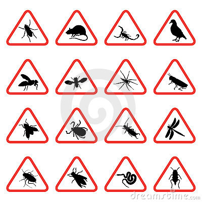 Rodent and pest warning signs 2
