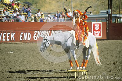 Rodeo antics on horseback Editorial Stock Photo