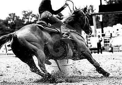 Rodeo Barrel Racing Closeup (BW)