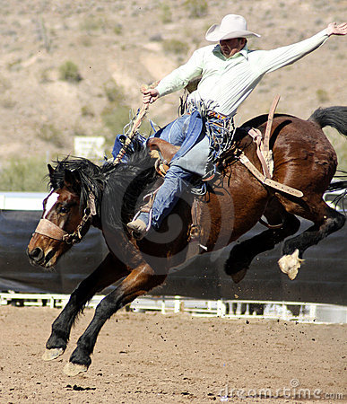 Free Rodeo Bucking Bronc Rider Royalty Free Stock Photography - 20951137
