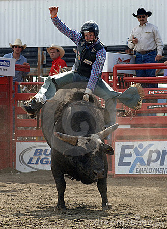 Rodeo: Bull Fighting Editorial Photo