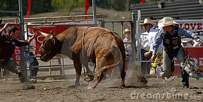 Rodeo: Bull Fighting Editorial Photography