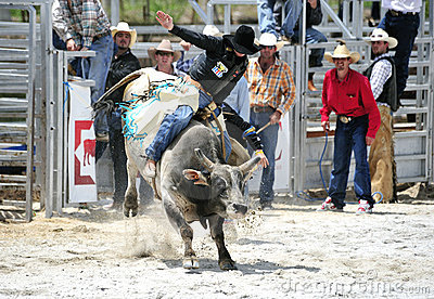 Rodeo Bull Riding Editorial Photo
