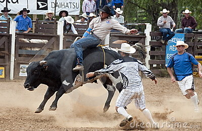 Rodeo - Cowboy riding a bull Editorial Stock Image