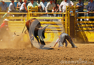 Rodeo Fun Editorial Stock Image