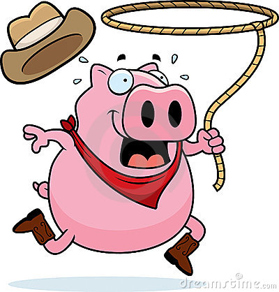 Rodeo Pig Stock Images - Image: 12473794