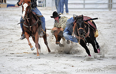 Rodeo Wrestling Editorial Stock Photo