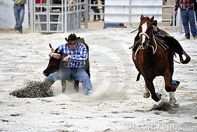 Rodeo Wrestling Editorial Stock Image