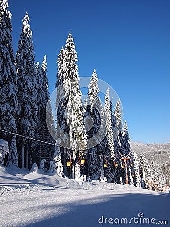 Free Rodopi Mountain Stock Photos - 22846353