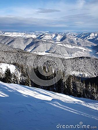 Free Rodopi Mountain Stock Photography - 22959572