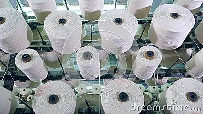 Rolamento branco da fibra nas bobinas, colocadas em uma cremalheira da fábrica filme