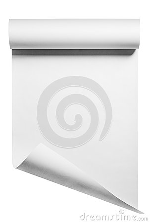 Roll of blank white paper, isolated