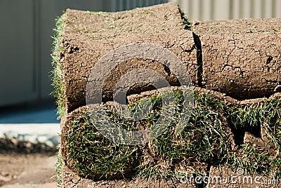 Roll of green grass