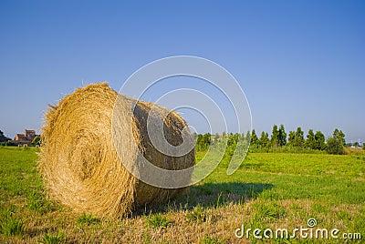 Roll of straw3