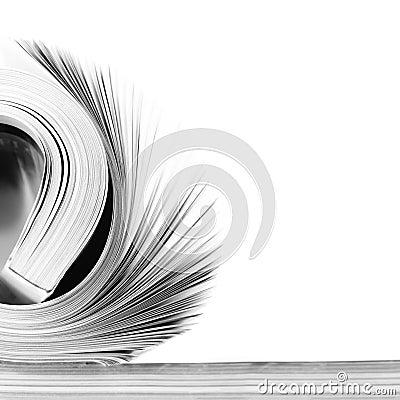 Free Rolled Magazine Royalty Free Stock Image - 33807936
