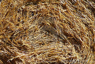 Rolled straw - background