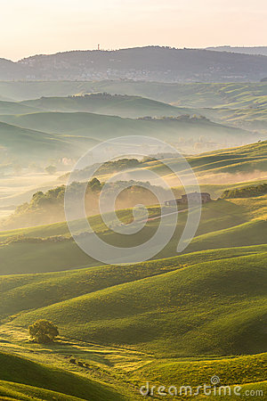 Free Rolling Fields With Fog Royalty Free Stock Image - 86002976