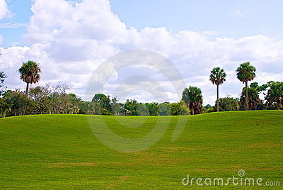 Rolling hill of golf course green